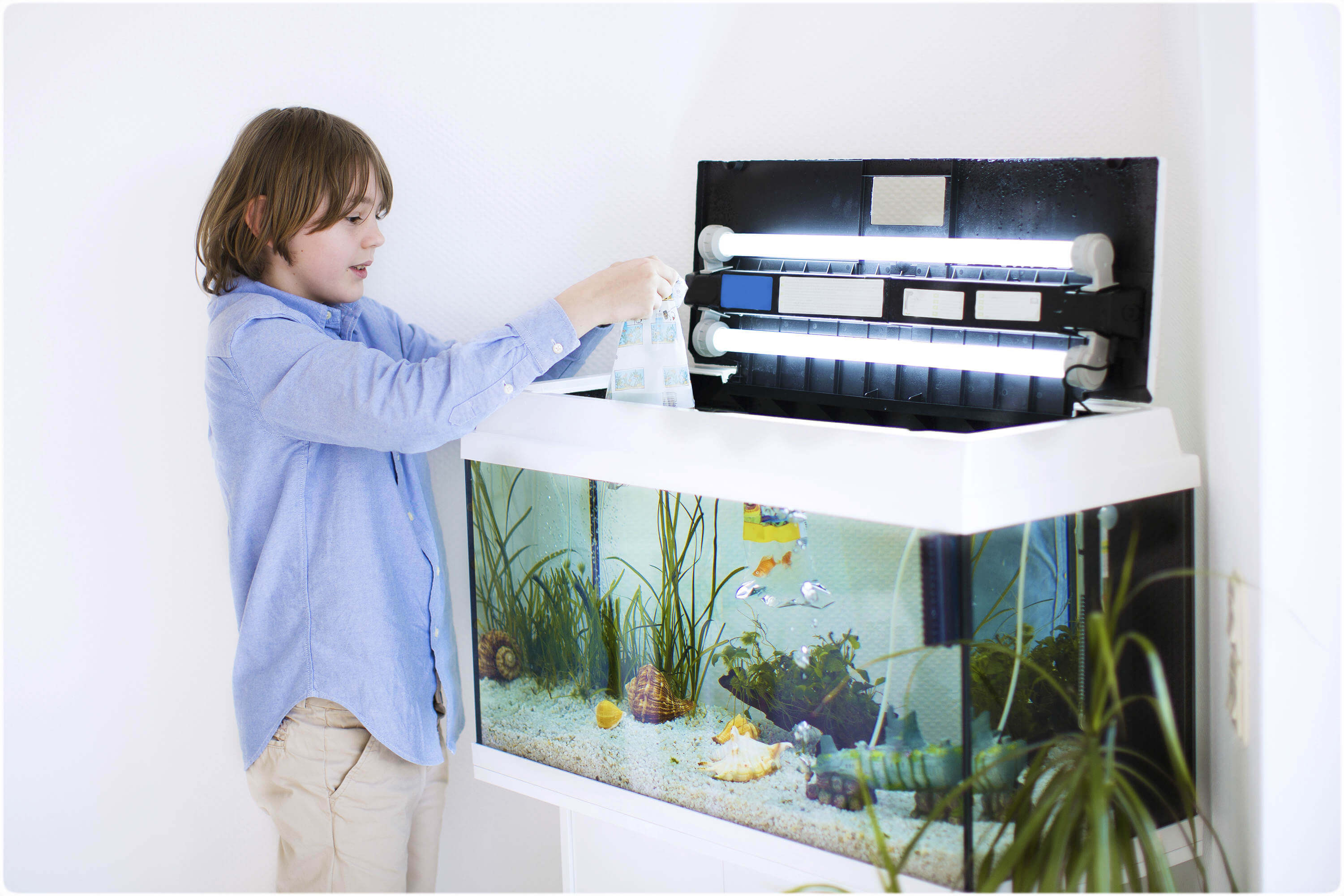 Clean Refreshing Aquarium Water for Your Fish & Plants